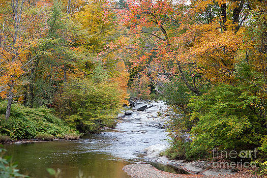 Early Fall Along Black Creek in Northern Vermont by Carol Barrington