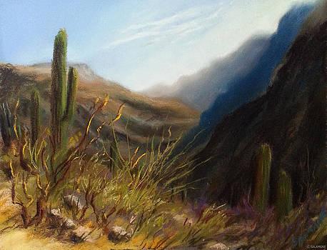 Early Hike Tucson by Brenda Salamone