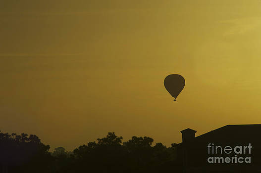 Elaine Mikkelstrup - Early Morning Balloon Ride