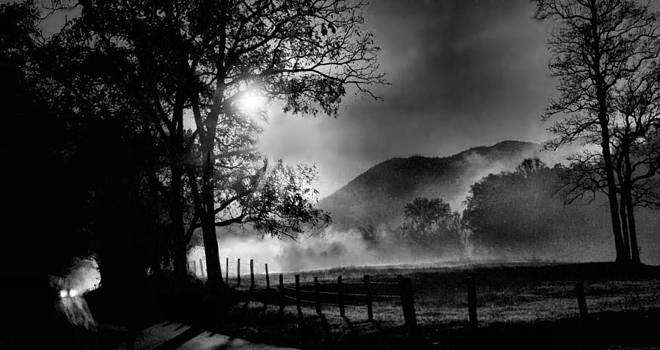 Early Morning Drive. by William Griffin