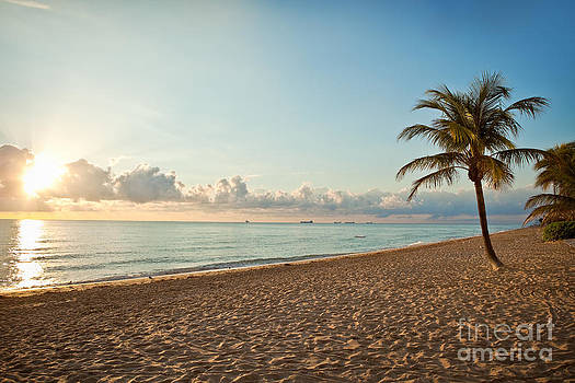 Early Morning Ft. Lauderdale Beach by Sharon Dominick