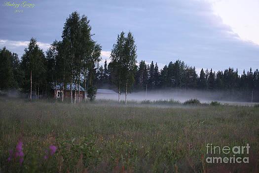 Early morning Lapland Sweden 2013 by  Andrzej Goszcz
