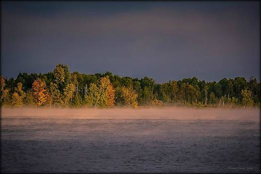 Early Morning by Michaela Preston
