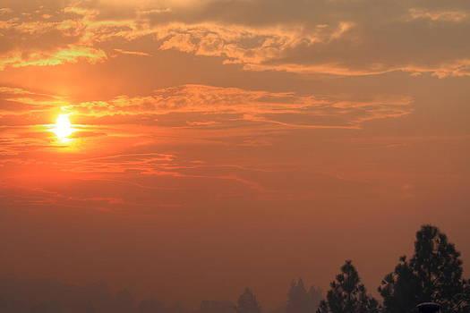 Early Morning Rim Fire by Judith Szantyr