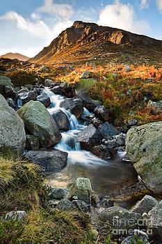 Early Morning Trassey River by Derek Smyth