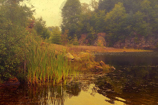 Early morning victorian pond by Dick Wood