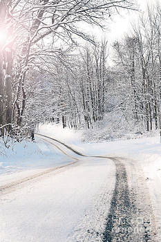 Early Morning Winter Road by Sharon Dominick