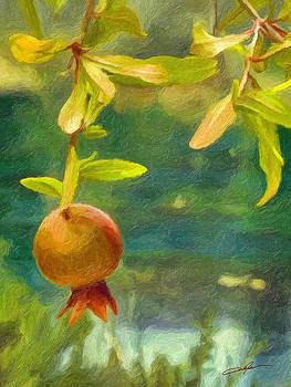 Dale Jackson - Early Pomegranate