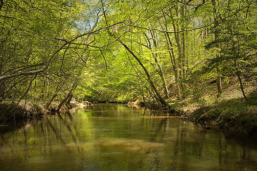 Early Spring at Moccasin Creek by Kelvin Taylor