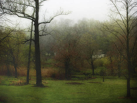 Early Spring Morn by Michelle Griffin