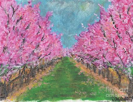 Peach Blooms by Jan Burley Hunt