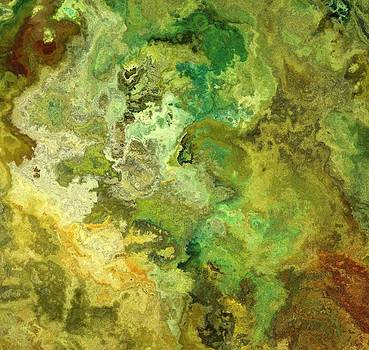 Earth from above by Jury Onyxman
