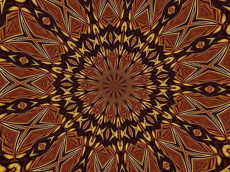 Earth Mandala by Chris Keenan