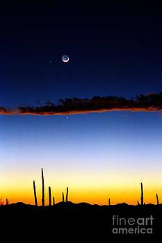 Douglas Taylor - EARTH - MOON - SATURN AND MARS