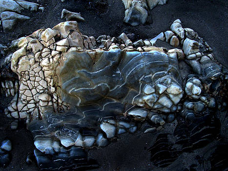 Randal Bruck - Earthbones