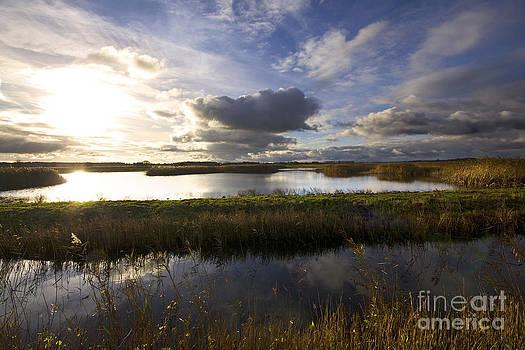 Darren Burroughs - East Coast Landscape