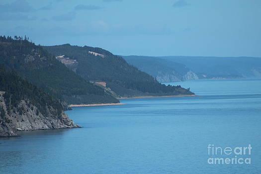 East Coast Shoreline by Margaret Hamilton