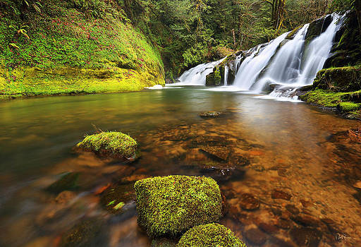 East Fork Coquille Falls by Robert Bynum