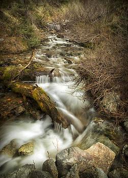 East Fork by Lisa Kidd