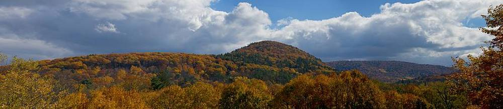 East Mountain by Charlene Palmer