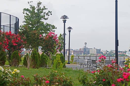 Steve Breslow - East River Park