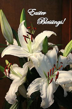 Rosanne Jordan - Easter Blessings Lily