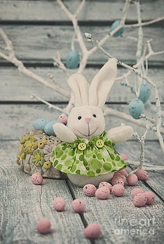 Mythja  Photography - Easter bunny