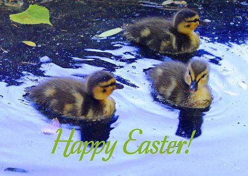 Ruth Soller - Easter ducklings card