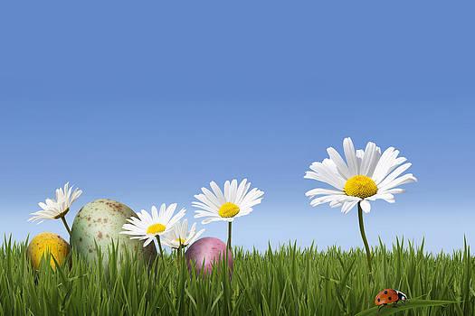 Easter Eggs in Spring Meadow by Gillian Dernie