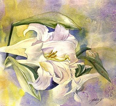 Alfred Ng - easter lily with yellow