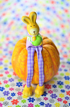 Gynt - Easter rabbit sitting on pumpkin