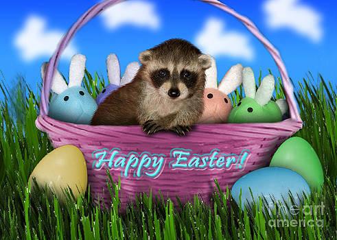 Jeanette K - Easter Raccoon
