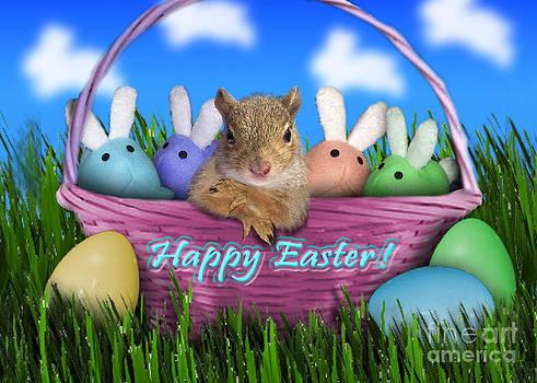 Jeanette K - Easter Squirrel