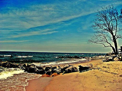 Kevin D Davis - Eastern Shore