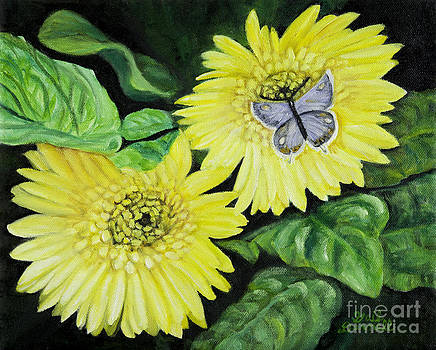 Eastern Tailed Blue Butterfly on Yellow Gerbera Daisies by Gail Darnell