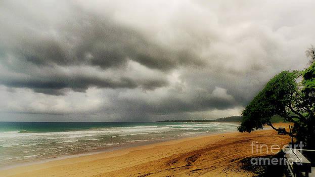 Charles Davis - Eastside Kauai Evening
