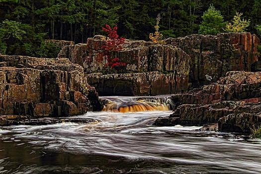 Dale Kauzlaric - Waterfall Under Colored Leaves