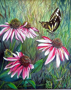 Susan Duxter - Echinacea