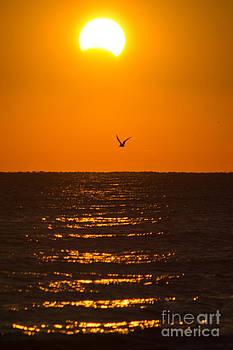 Eclipse Sunrise by Jennifer Marie Nature Exposed