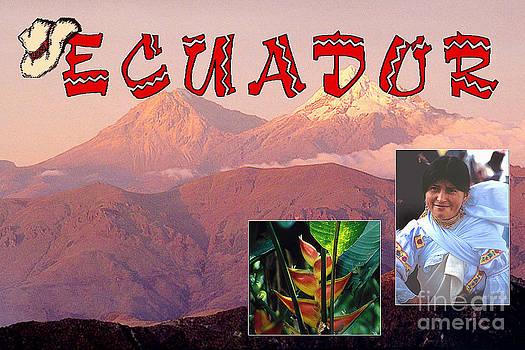 Ecuador Poster by Eva Kato