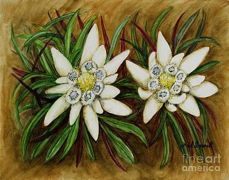 Edelweiss by Gail Darnell