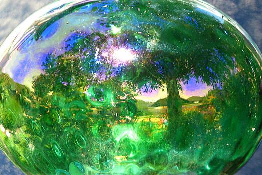 Eden by Lisa Yount