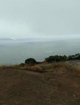 Edge of the Bay by Jennifer Fliegel