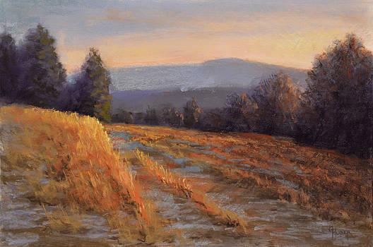 Edge of Walters' Farm by Gary Huber