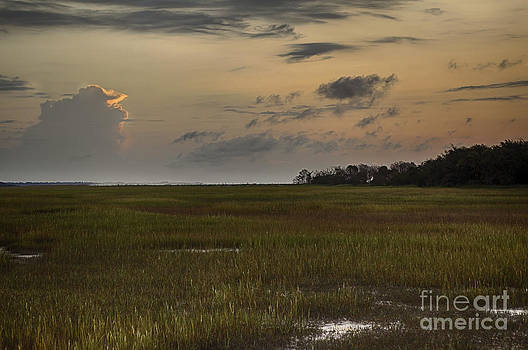 Edisto Dawn by George Cathcart