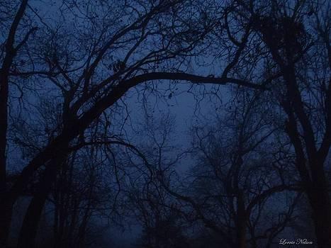 Eerie Night by Lorrie M Nelson