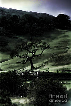 Eerie Slope by C Ray  Roth