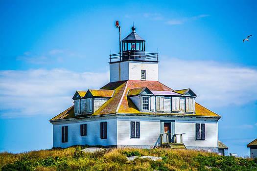 Egg Island Lighthouse and Seagull by Jason Brow
