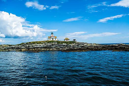 Egg Island Lighthouse Wide Angle by Jason Brow