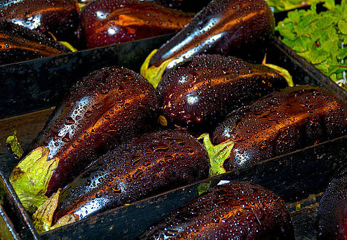 Robert Meyers-Lussier - Eggplants